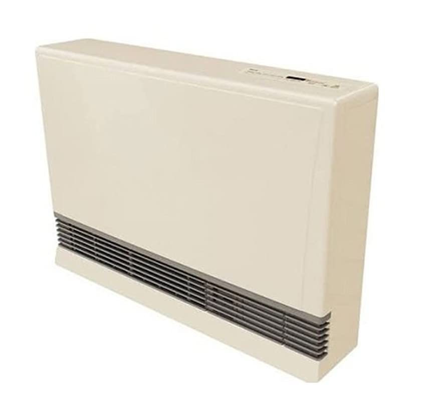 クラッチスチュワーデス注釈Rinnai EX38CTLP Direct Vent Space Heater - Liquid Propane BEIGE, 141[並行輸入]