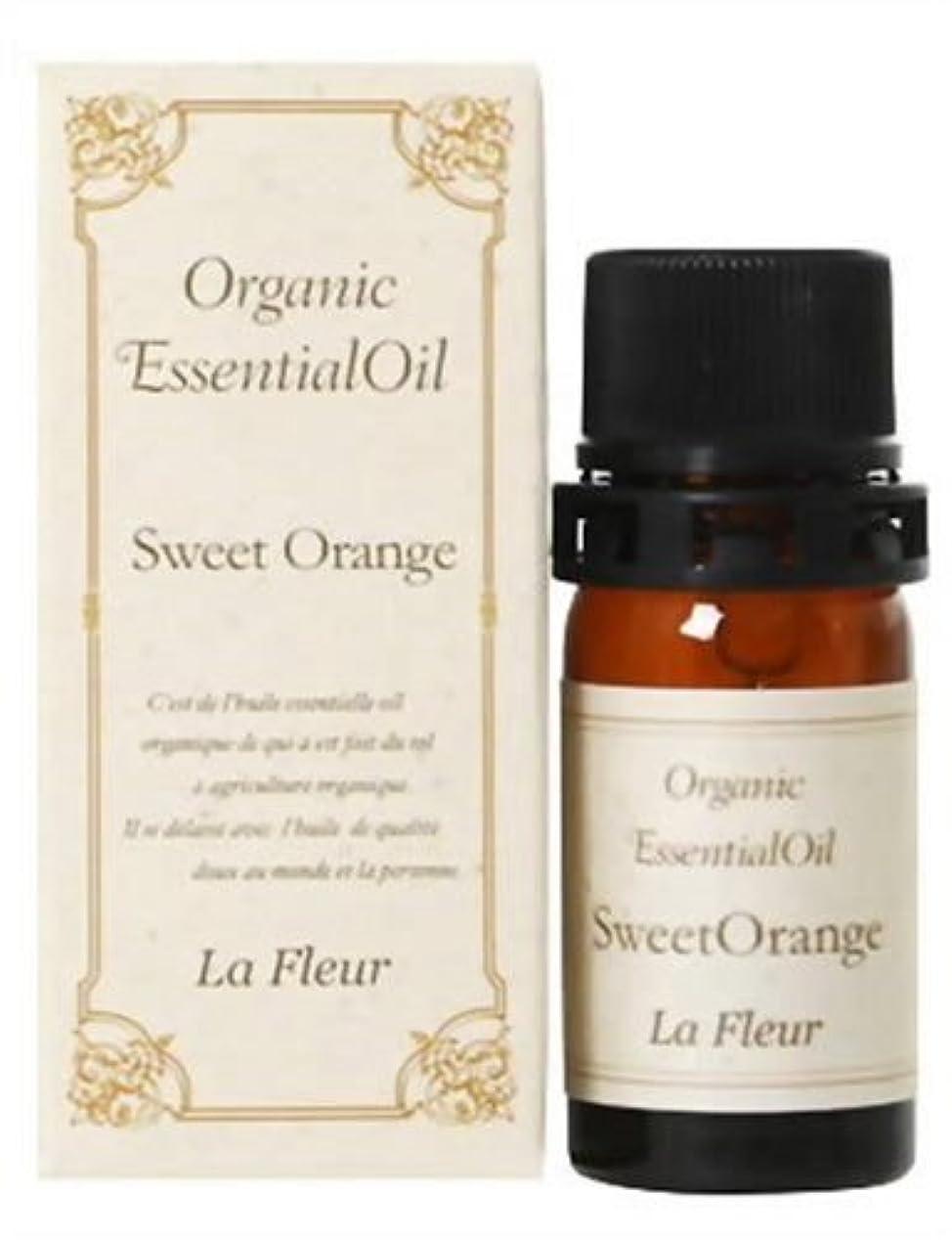 報酬の征服するかなりの美健 オーガニックエッセンシャルオイル オレンジ 5.5ml