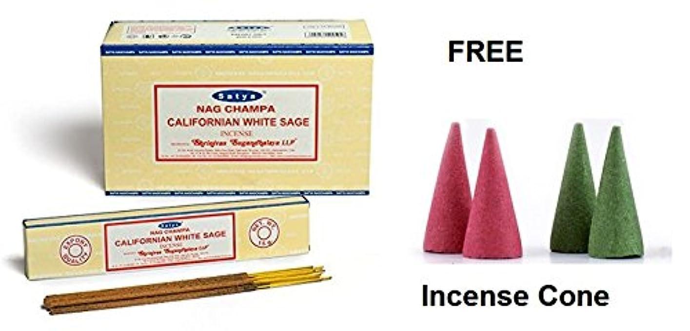 無意味教農村Buycrafty Satya Champa Californian White Sage Incense Stick,180 Grams Box (15g x 12 Boxes) with 4 Free Incense Cone