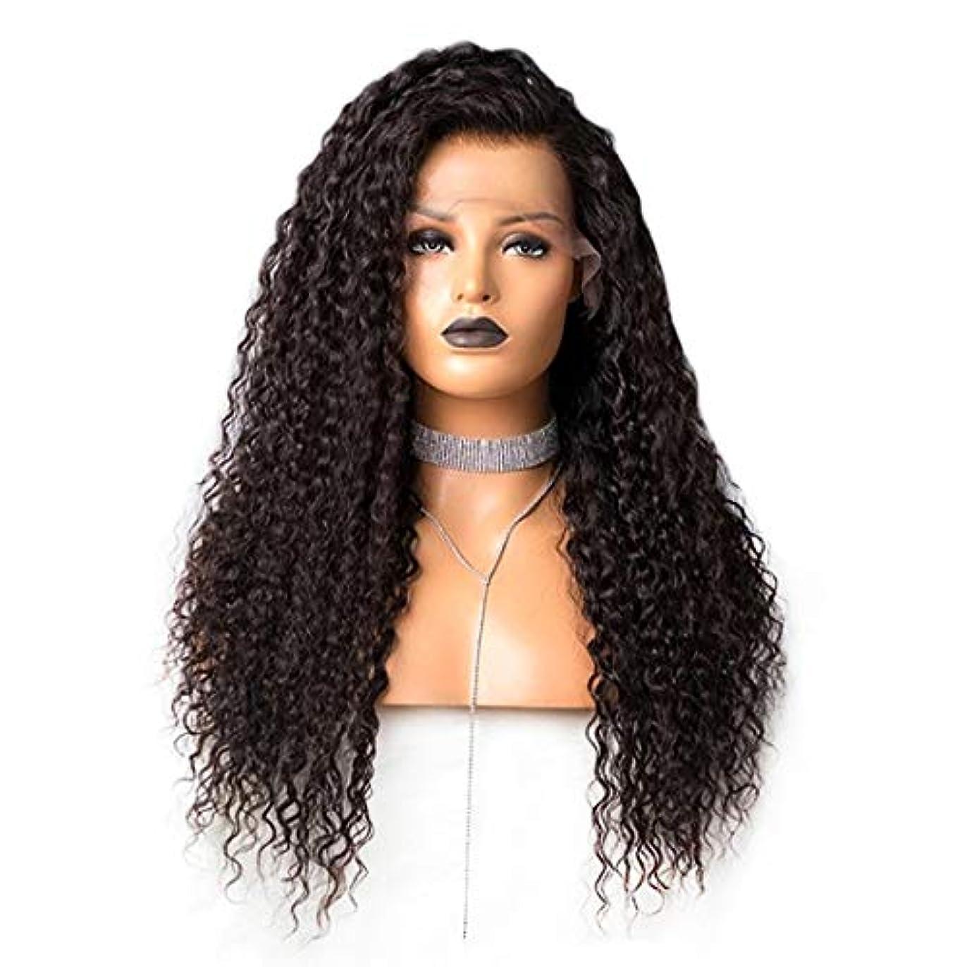 防衛エントリタクトKoloeplf 女性のための長い緩いカーリー合成かつら黒い色の髪 (Size : 24inch)