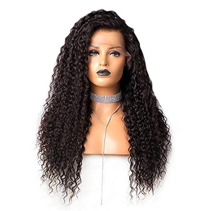 喜んでスキニー流用するKoloeplf 女性のための長い緩いカーリー合成かつら黒い色の髪 (Size : 24inch)