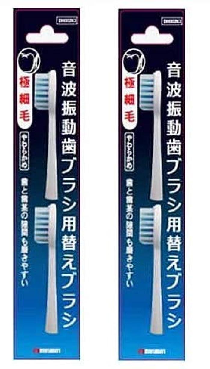 マルマン 電動歯ブラシ ミニモ/プロソニック1/プロソニック2/プロソニック3 対応 替えブラシ 極細毛 2本組 DK002N2 (2)