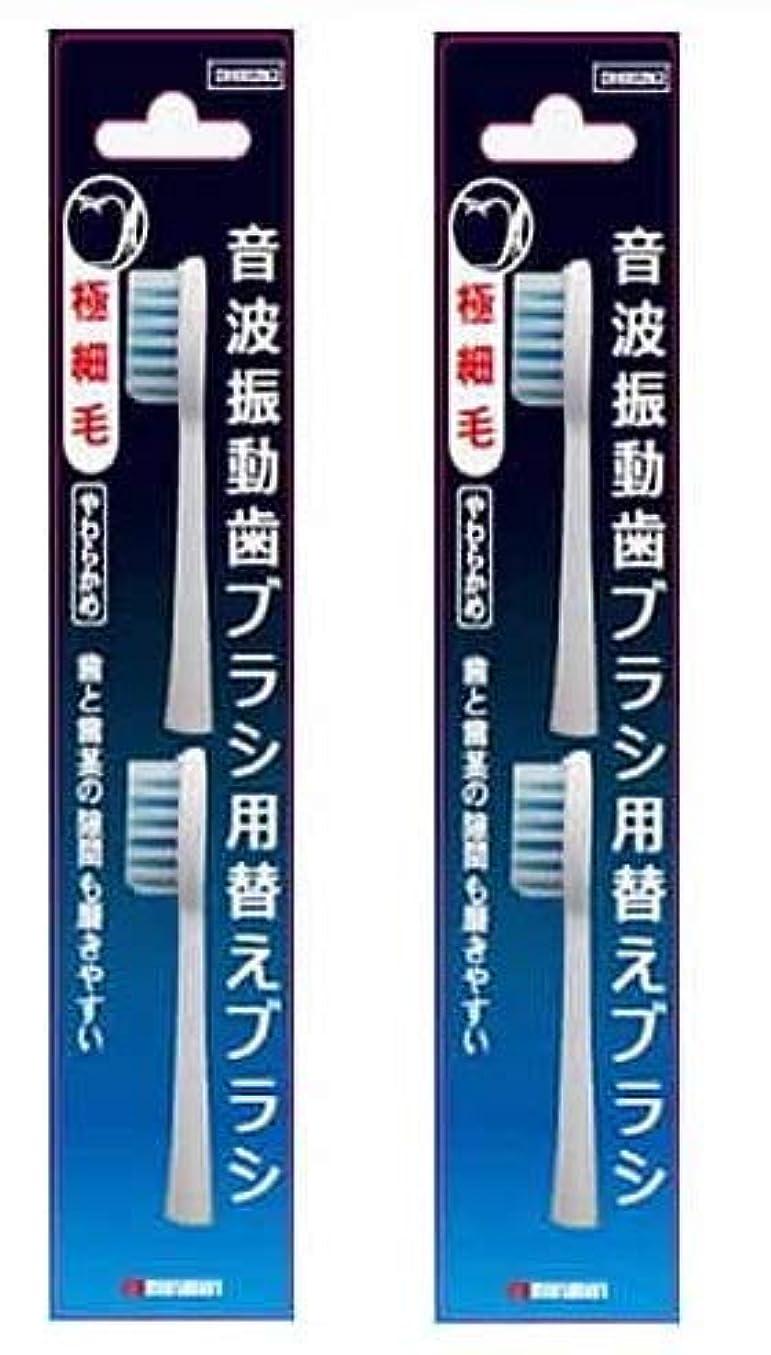機械的知的バリケードマルマン 電動歯ブラシ ミニモ/プロソニック1/プロソニック2/プロソニック3 対応 替えブラシ 極細毛 2本組 DK002N2 (2)