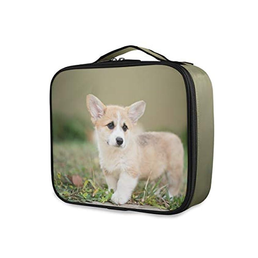 愛人司法推進Kaaridream メイクボックス プロ用 便携式 大容量 機能的 化粧ポーチコーギー いぬ 犬柄 アニマル かわいい 可愛いコスメ収納ボックス 仕切り 化粧 メイクケース 出張 海外旅行 携帯用 化粧品収納