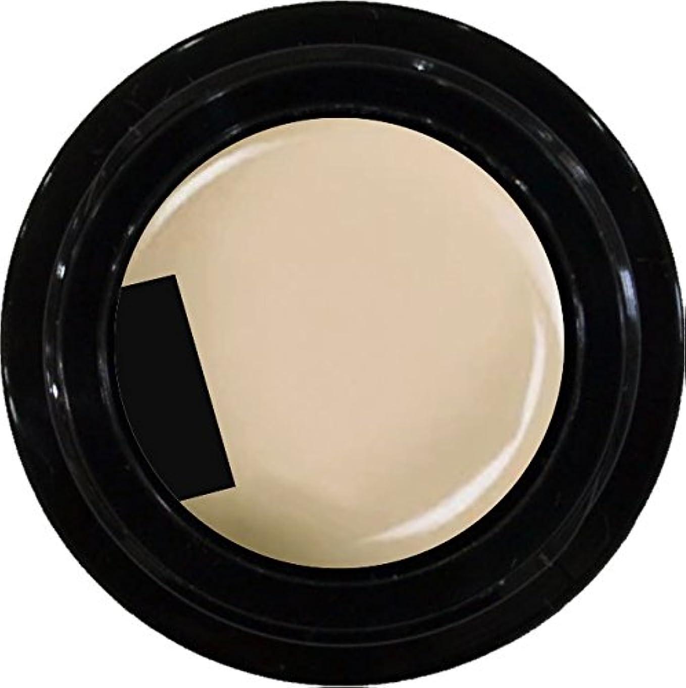 近似頻繁に受取人カラージェル enchant color gel M101 Vermont 3g/ マットカラージェル M101 バーモント 3グラム