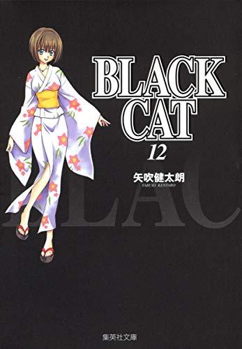 BLACK CAT 12 (集英社文庫―コミック版)の詳細を見る