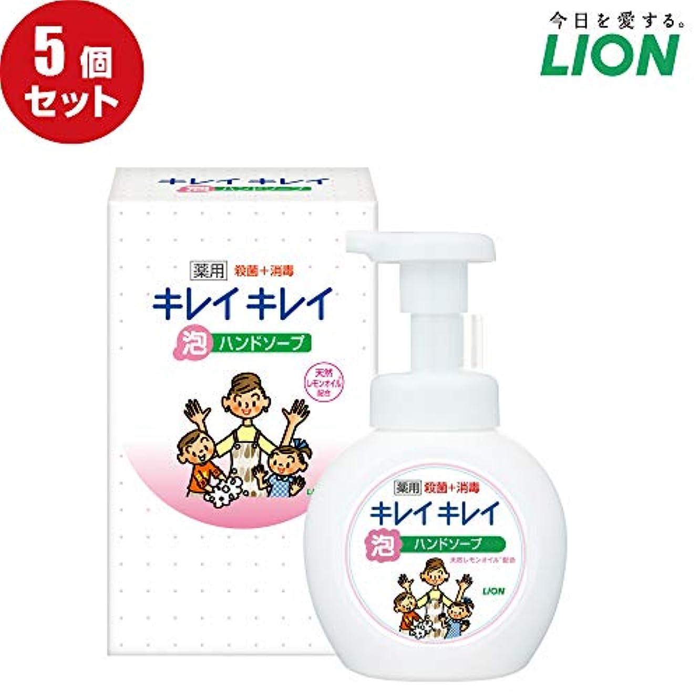 ブースベンチャー予算【5個セット】LION キレイキレイ薬用泡ハンドソープ250ml ノベルティギフト用化粧箱入