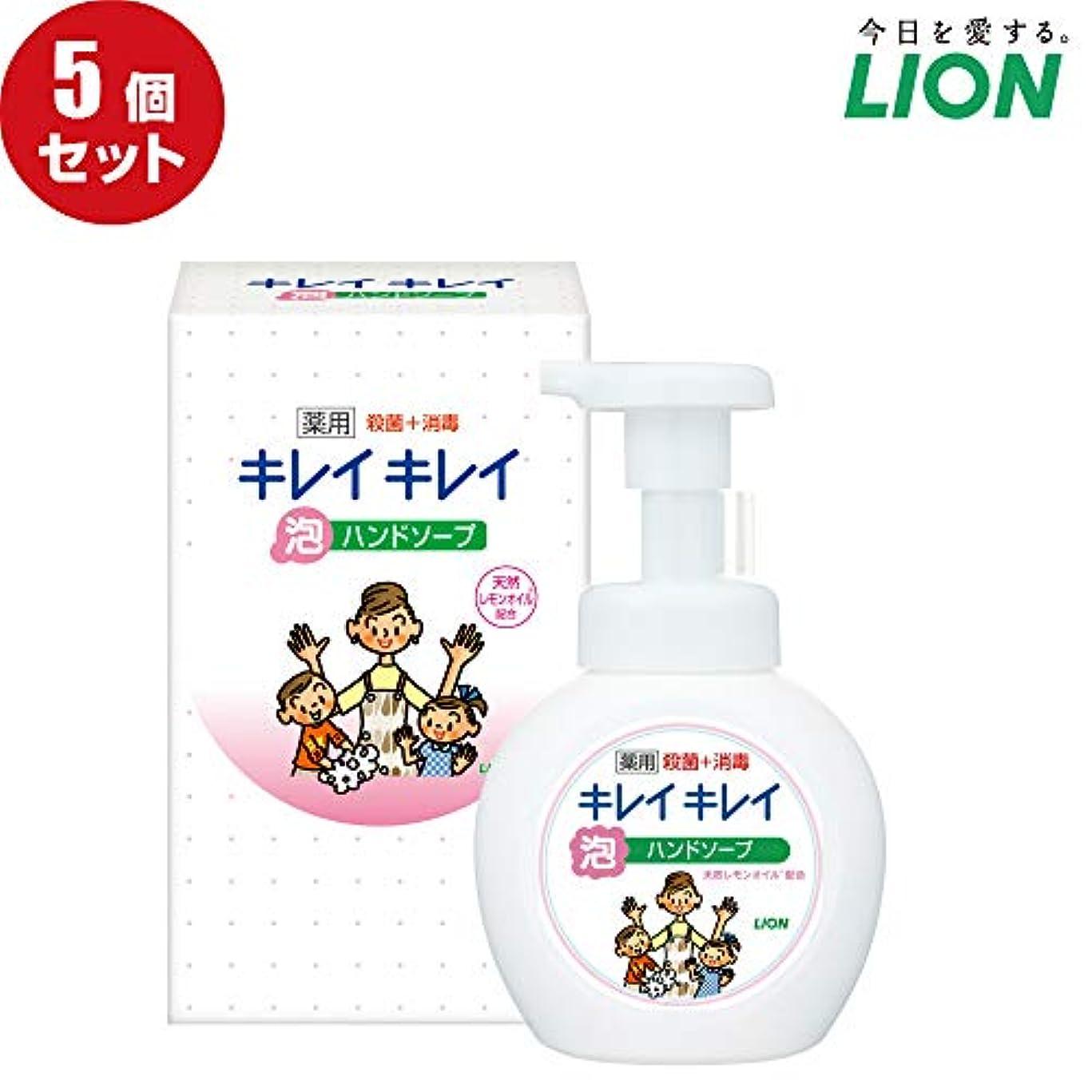 アロングタイト力強い【5個セット】LION キレイキレイ薬用泡ハンドソープ250ml ノベルティギフト用化粧箱入