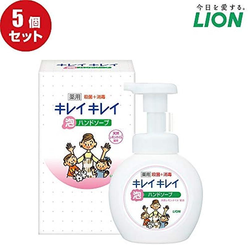 ご注意熱帯のできない【5個セット】LION キレイキレイ薬用泡ハンドソープ250ml ノベルティギフト用化粧箱入