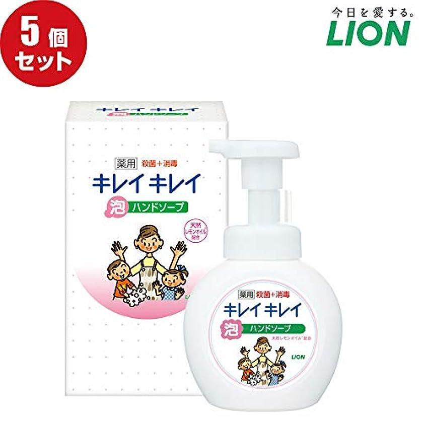 日没滅びる調査【5個セット】LION キレイキレイ薬用泡ハンドソープ250ml ノベルティギフト用化粧箱入