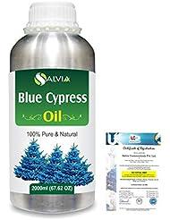 Blue Cypress (Callitris Columellaris) 100% Natural Pure Essential Oil 2000ml/67 fl.oz.