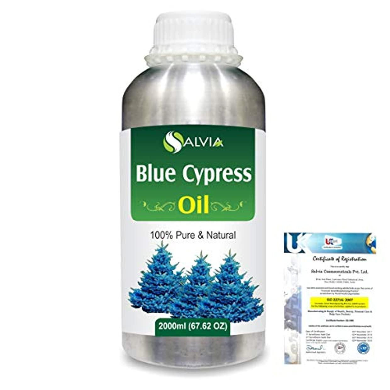 ストライプパートナー編集者Blue Cypress (Callitris Columellaris) 100% Natural Pure Essential Oil 2000ml/67 fl.oz.