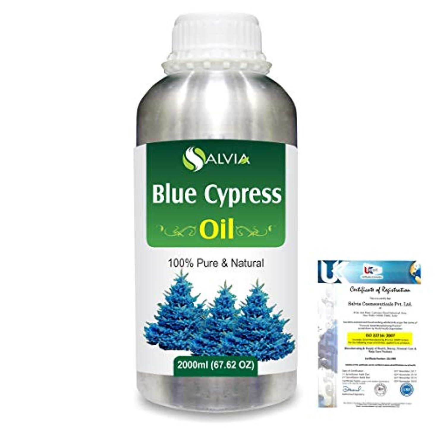 和らげるカウントアップ明示的にBlue Cypress (Callitris Columellaris) 100% Natural Pure Essential Oil 2000ml/67 fl.oz.