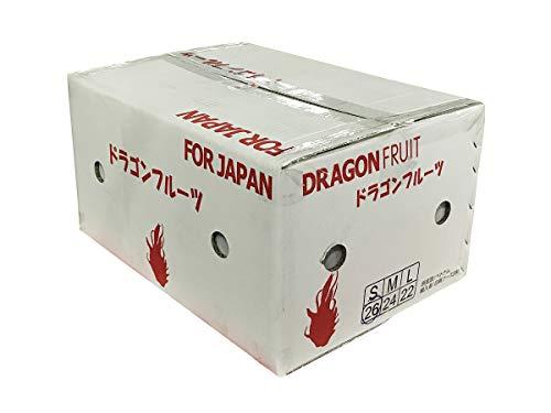 ベトナム産 ドラゴンフルーツ 白肉種 26玉入り(1箱)