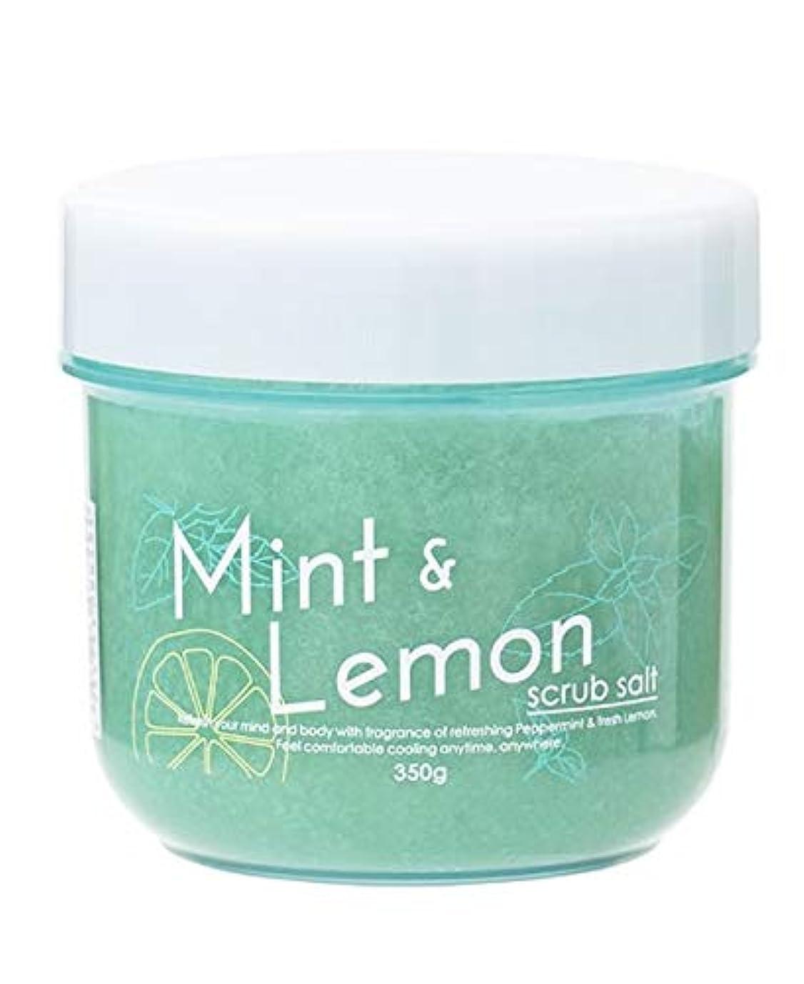 毎週買い手アイスクリーム生活の木 ミント&レモン スクラブソルト 350g