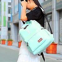 ZHANGYOUDE Double Zipper Design Polyester Double Shoulders School Bag Travel Backpackage Bag (Pink) (Color : Cyan)