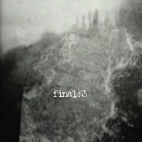 Final3