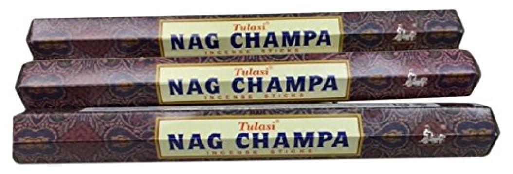 浸す貼り直す留まるTULASI サラチ STICKS お香 60本入り NAG CHAMPA ナグチャンパ 025001-3