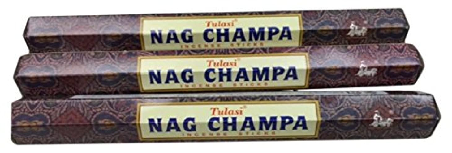 踏みつけ手数料反逆者TULASI サラチ STICKS お香 60本入り NAG CHAMPA ナグチャンパ 025001-3