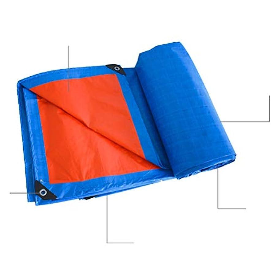 家庭所有者苦痛防水シートリノリウム おおいのテント、ボート、RVまたはプールカバーのための防水ターポリンプラスチック防水シート保護シート ZHANGQIANG (Color : A, Size : 5x6m)