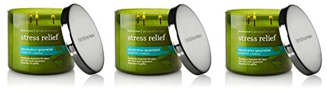 事実上アマゾンジャングルオリエンテーションBath & Body Works , Aromatherapy Stress Relief 3-wick Candle、ユーカリスペアミント 3 Pack (Eucalyptus Spearmint)