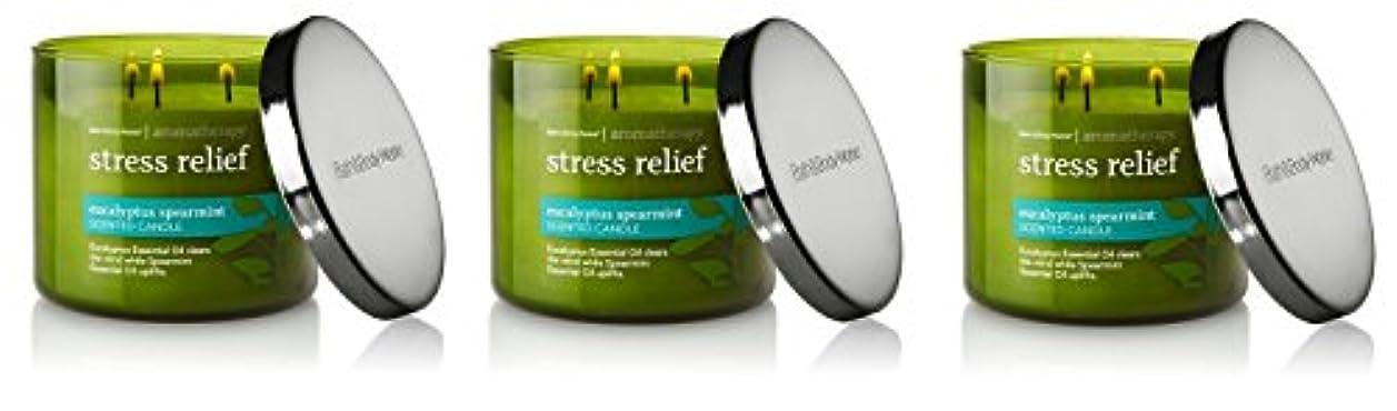 素敵な避難請負業者Bath & Body Works , Aromatherapy Stress Relief 3-wick Candle、ユーカリスペアミント 3 Pack (Eucalyptus Spearmint)