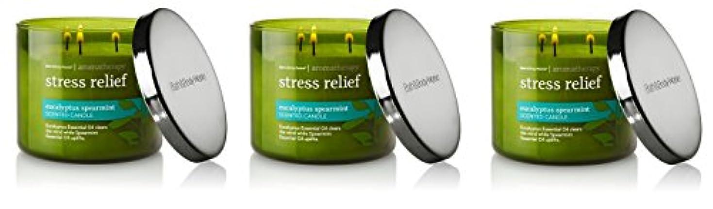 おなじみのバスタブホームレスBath & Body Works , Aromatherapy Stress Relief 3-wick Candle、ユーカリスペアミント 3 Pack (Eucalyptus Spearmint)