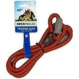 Cesar Millan Slip Lead Leash | Dog Leash | in Training Leash | (Regular, Red/Olive)