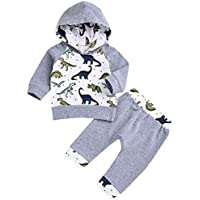 Xuuly Newborn Baby Boy Girl Clothes Long Sleeve Dinosaur Hooded T-Shirt Tops + Cute Pants 2PCS Outfit Set