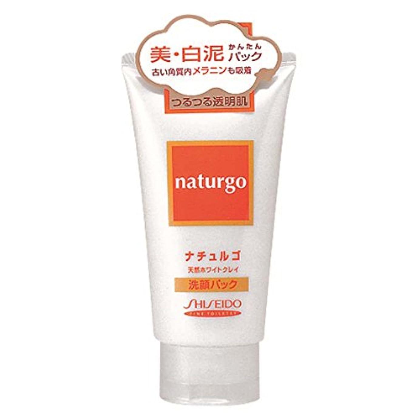 ナイロン溶融逆さまに【アウトレット品】ナチュルゴ 天然ホワイトクレイ洗顔パック
