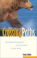 Crossing Paths: Uncommon Encounters With Animals in the Wild