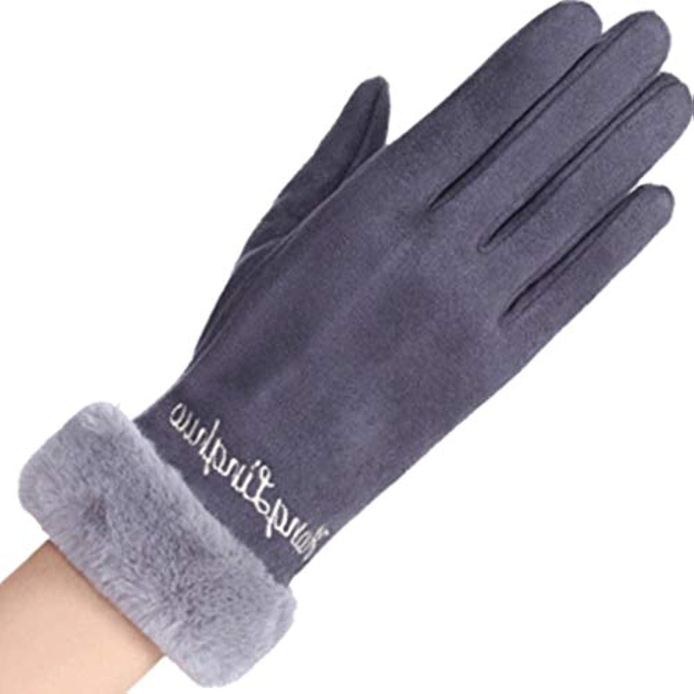 スリンク学期ユニークな手袋の女性の暖かいタッチスクリーンの携帯電話春と秋の冬の防風レターレディースウール手袋黒灰色の粉 (色 : Gray)