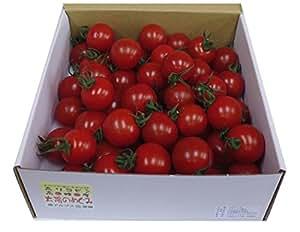 **只今20%増量中**山梨県南アルプス市より「あまーいフルーツトマト」お届けします。「太陽のめぐみ」(無選別1kg)