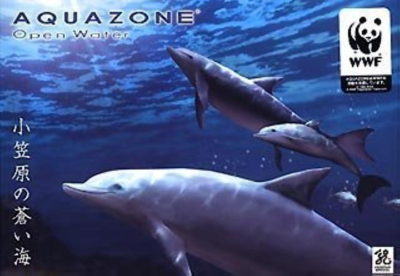 収束する創傷抹消AQUAZONE Open Water 小笠原の蒼い海