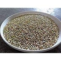 くず米(網目1.8下) 内容量20kg
