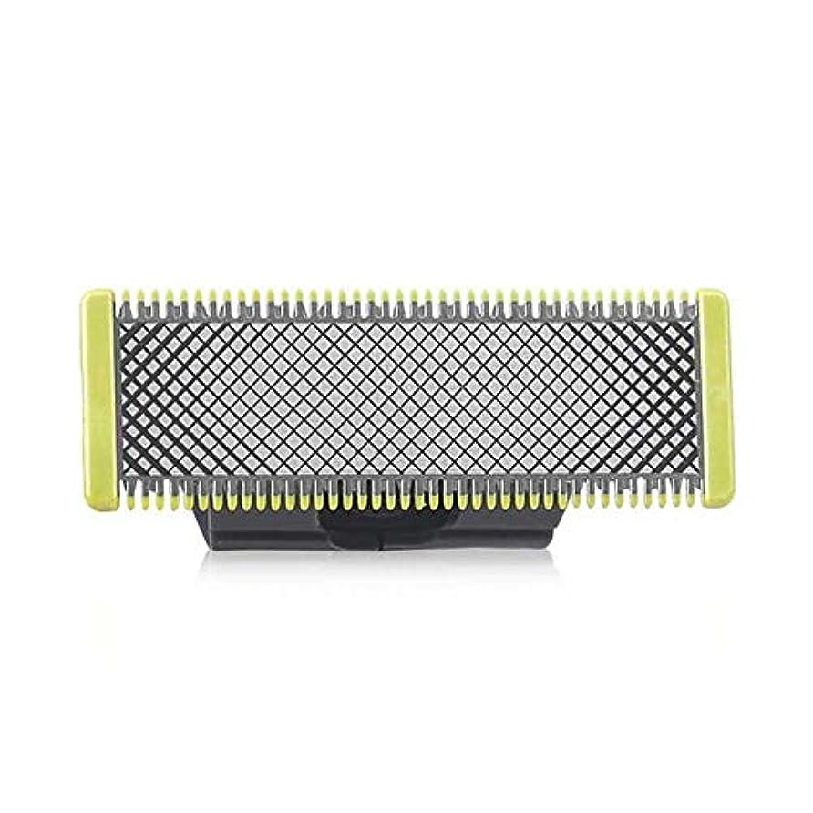 同等の前提正しいシェーバー 替刃 1つの刃QP2520のための取り替えの刃の実用的な剃る安全なかみそりの頭部