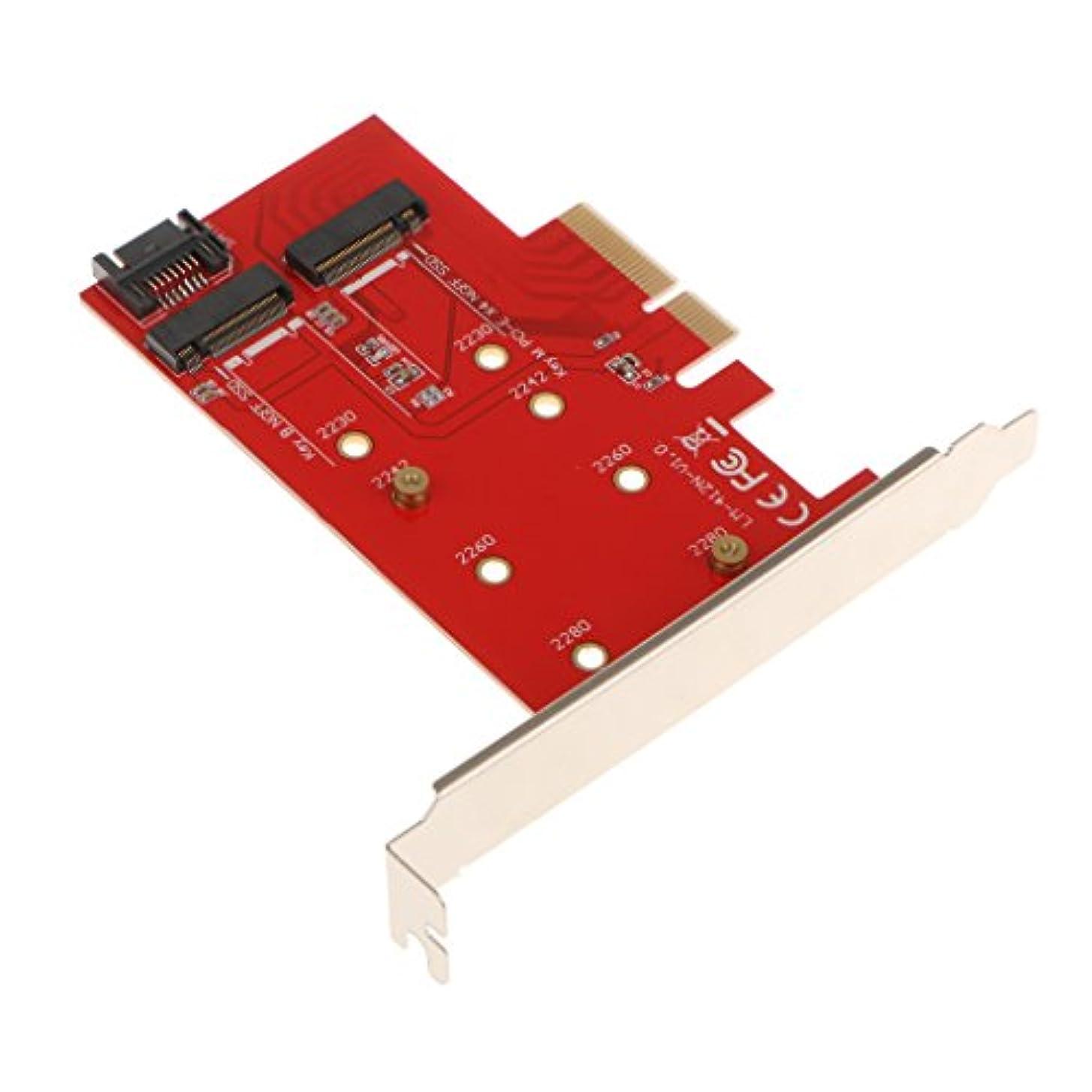 市民高く結晶Perfk 2ポート NGFF M.2 B   Mキー SSD→PCI-E  PCI エクスプレス 4X 4 レーンアダプタカード 120x114x1.5mm