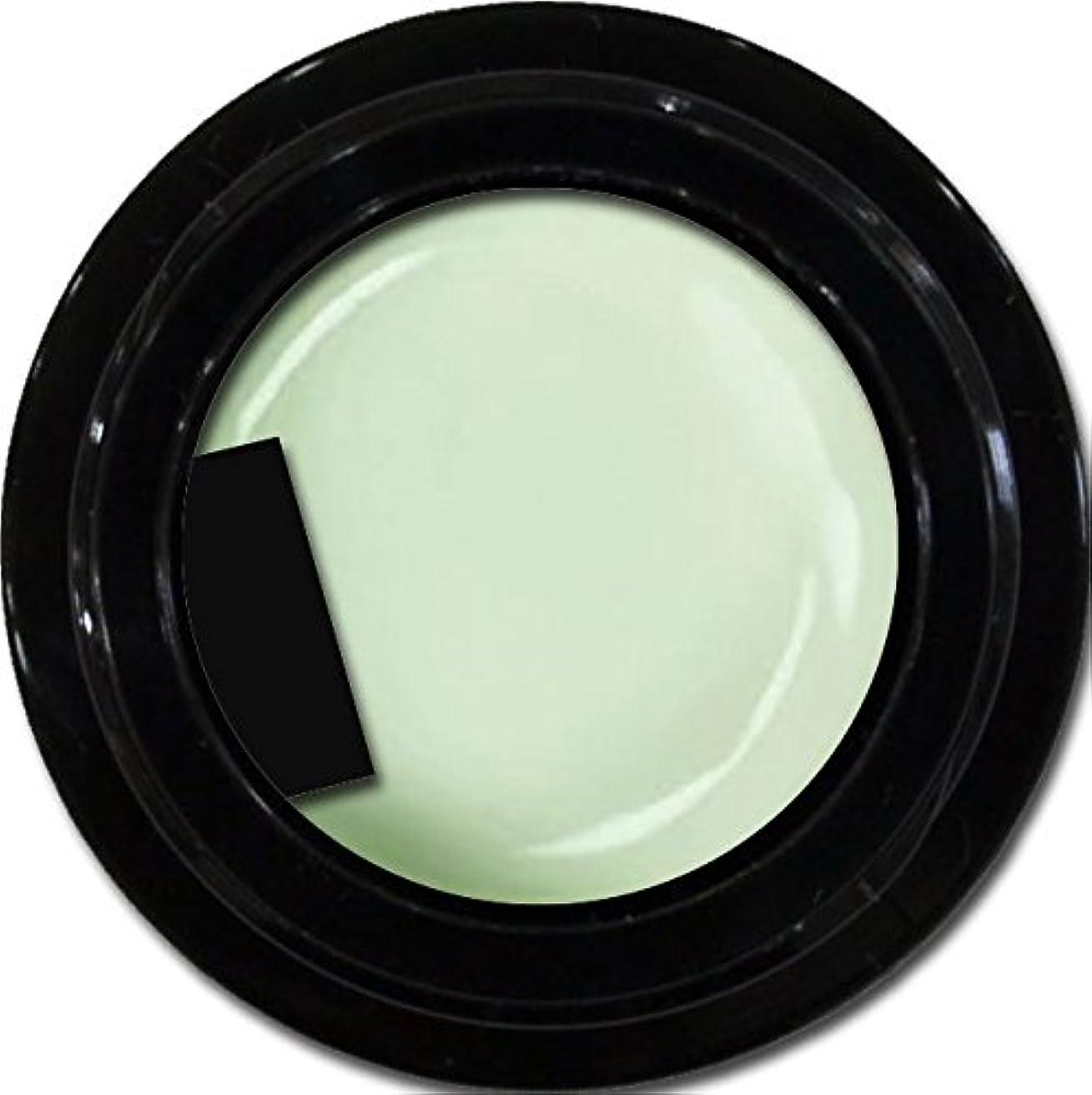 エレガント意気消沈した猫背カラージェル enchant color gel M710 Pistachio 3g/ マットカラージェル M710 ピスタチオ 3グラム
