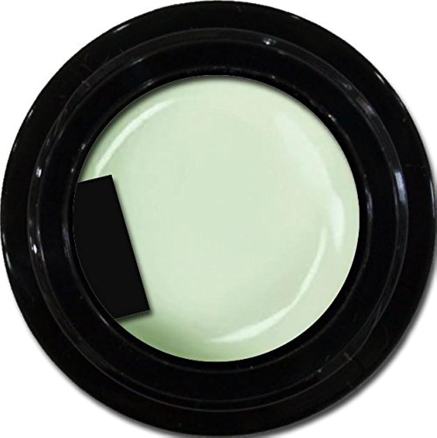 ディプロマ均等に真夜中カラージェル enchant color gel M710 Pistachio 3g/ マットカラージェル M710 ピスタチオ 3グラム