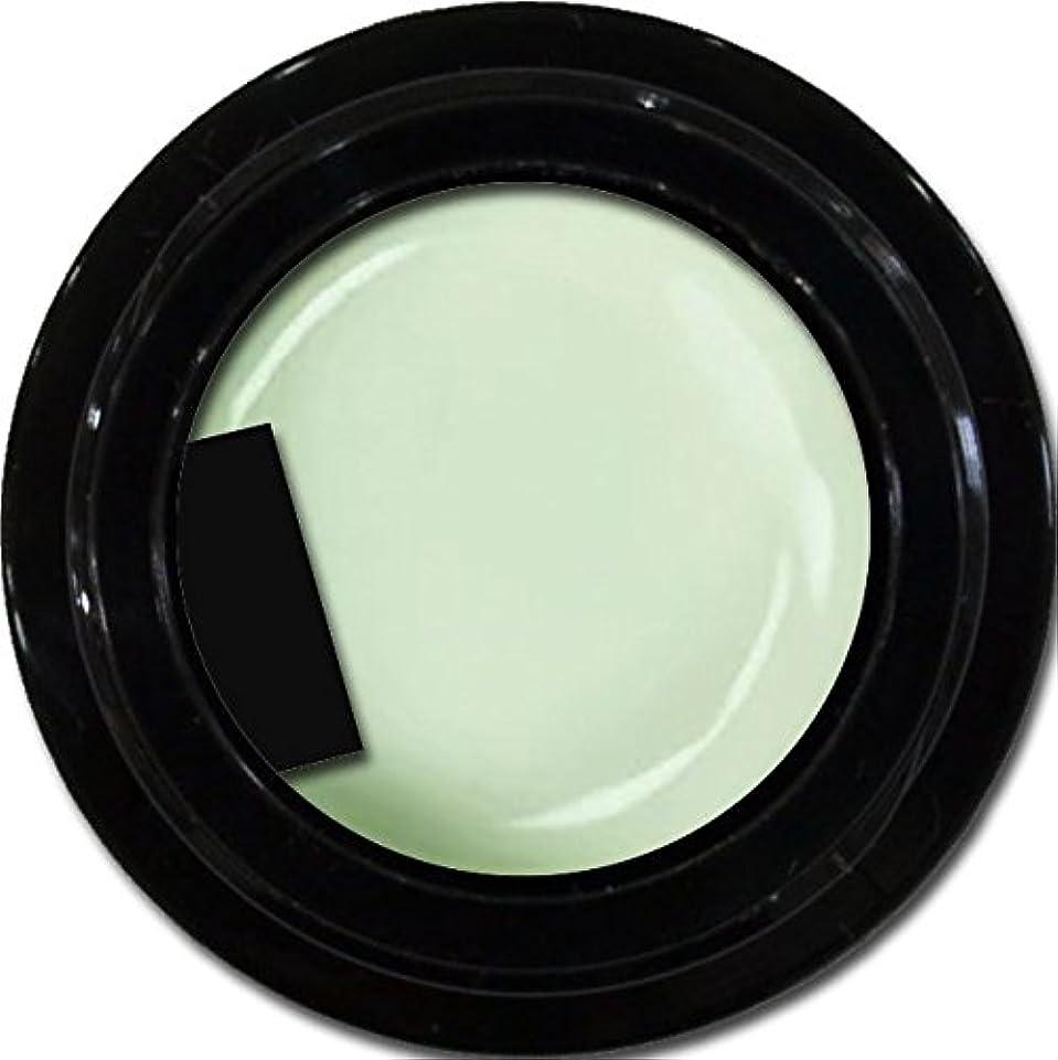 個人的に最適毎週カラージェル enchant color gel M710 Pistachio 3g/ マットカラージェル M710 ピスタチオ 3グラム