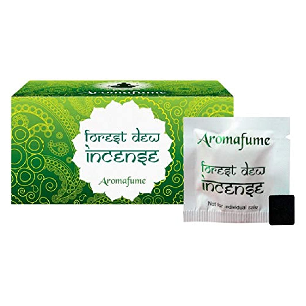 に卒業記念アルバム等しいAromafume Forest Dew Incense Bricks (Medium)