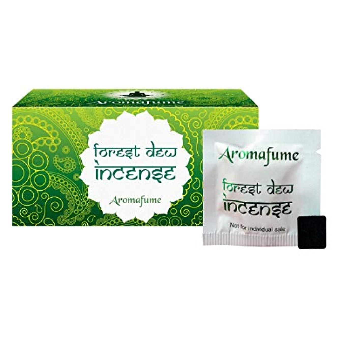 ジャムトリムトレッドAromafume Forest Dew Incense Bricks (Medium)