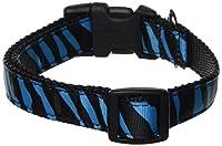 Sassy Dog Wear 13-20-Inch Turquoise/Black Zebra Dog Collar, Medium by Sassy Dog Wear