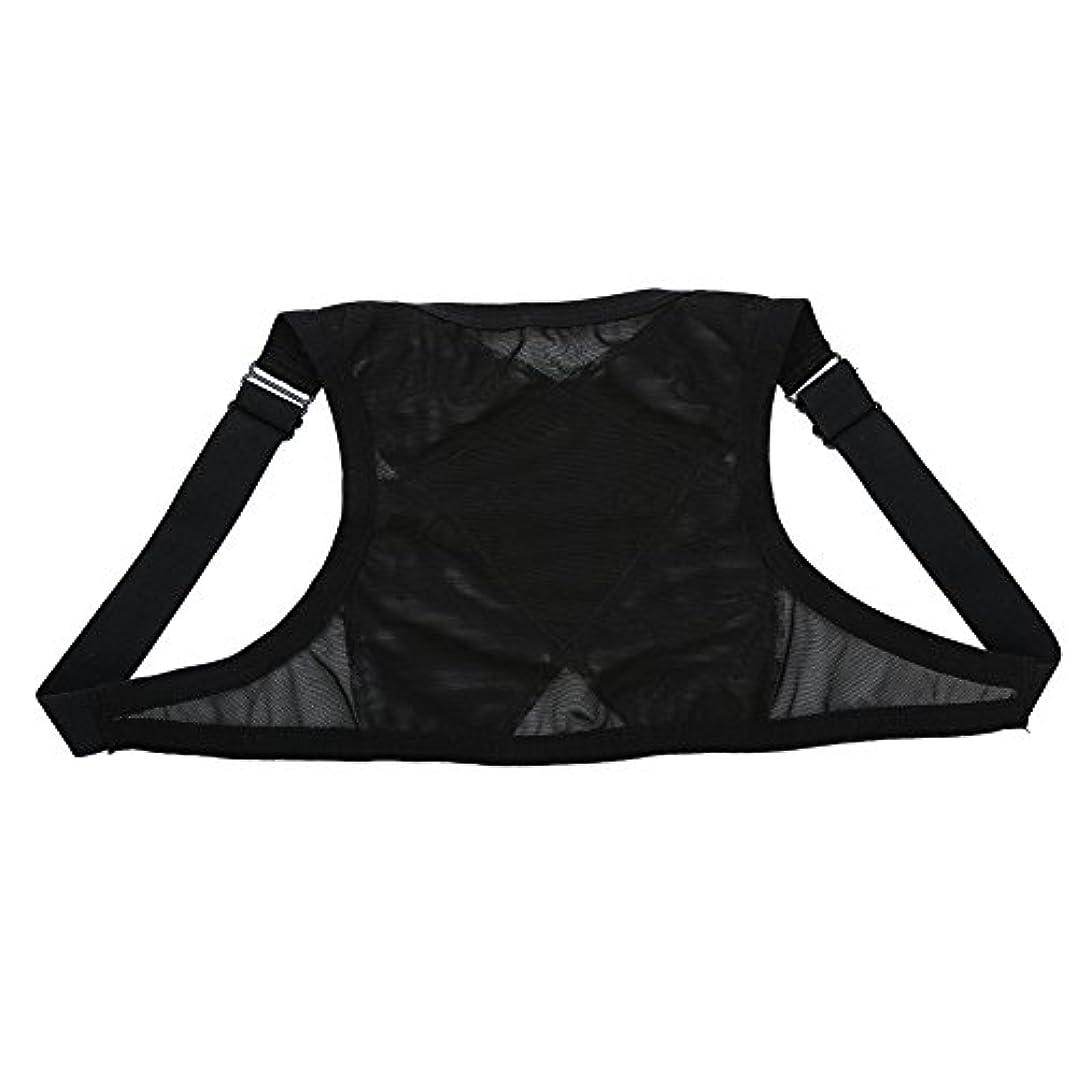 ポルノ今受粉する姿勢矯正具、整形外科用矯正具、肩の体位の矯正、整形外科用こぶの軽減のための包帯矯正具、青年用(L)