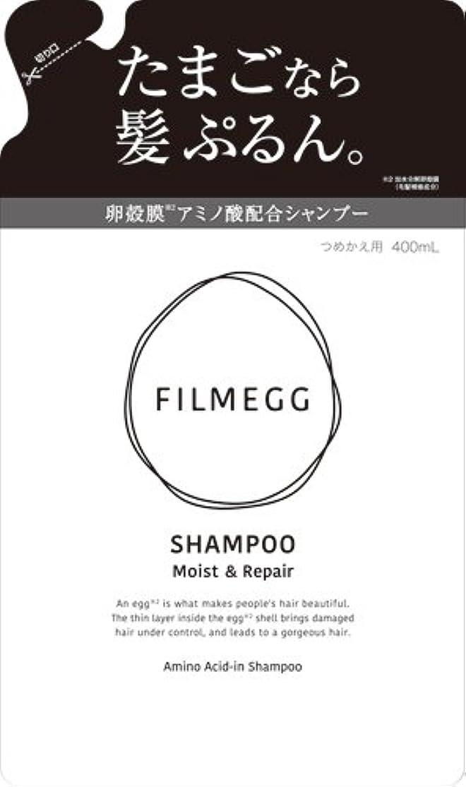 スリーブ協力キモいFILMEGG(フィルメッグ) シャンプー 詰替え 400ml