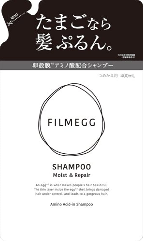 くさび緩やかな磁石FILMEGG(フィルメッグ) シャンプー 詰替え 400ml