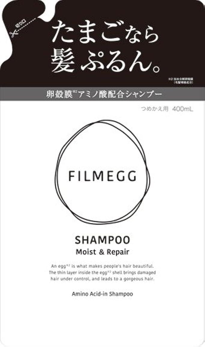 留め金ささやき傾いたFILMEGG(フィルメッグ) シャンプー 詰替え 400ml