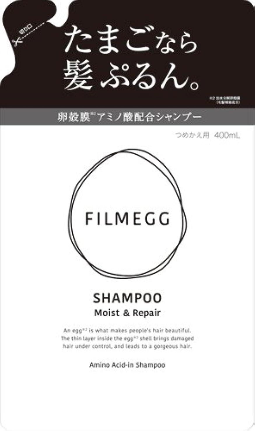 消費する早熟貸し手FILMEGG(フィルメッグ) シャンプー 詰替え 400ml