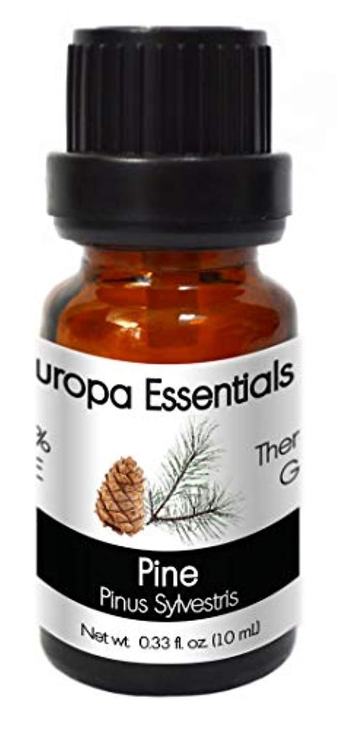 アレンジ欠員赤道Europa Essentials 100 %ピュアオイルアロマセラピーコレクション