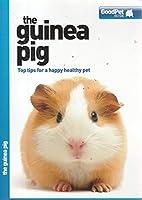 The Guinea Pig - Good Pet Guide